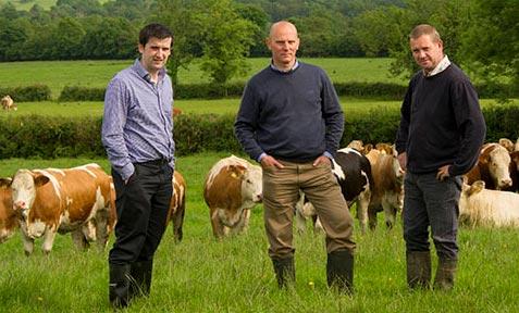 Ashbourne Beef and Lamb Ltd, Dublin Butchers,
